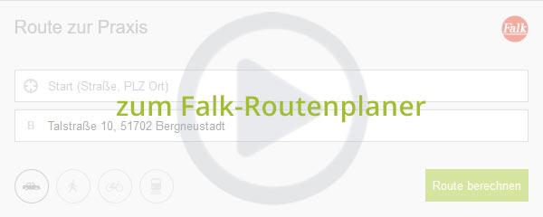 Preview Falk Routenplaner